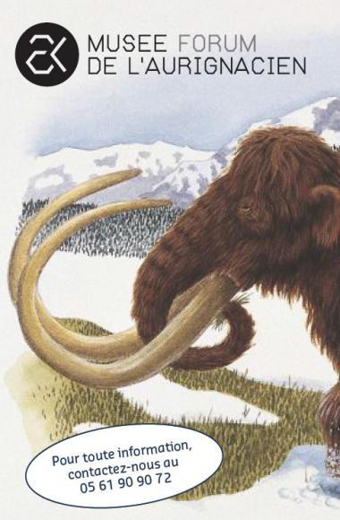 animations musée préhistoire